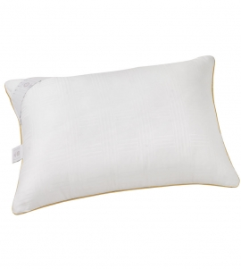 Gold Silicone Pillow